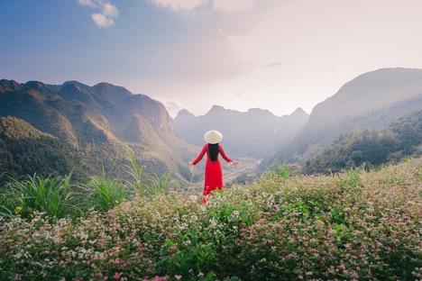 トライアングルサーキットは岩だらけの高原全体に咲きます